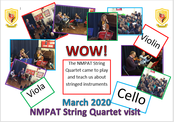 nmpat string visit 2020 - website
